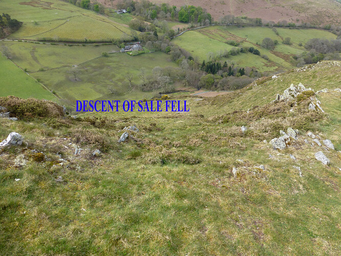 034 ling_sale_watch hills 09-05-2021 10-38-20