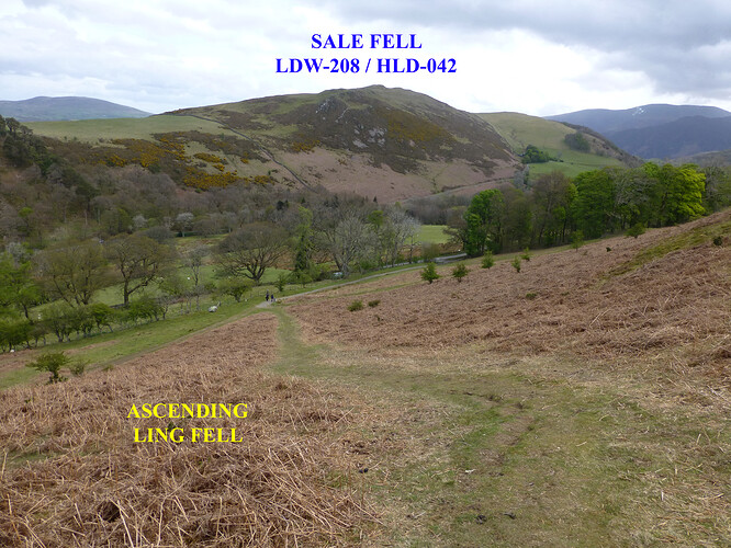 042 ling_sale_watch hills 09-05-2021 11-06-13