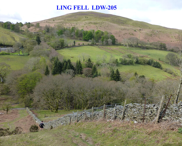008 ling_sale_watch hills 09-05-2021 09-31-35