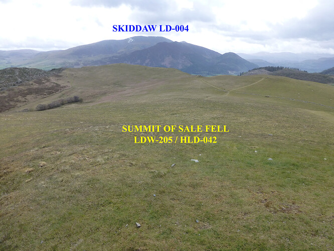 020 ling_sale_watch hills 09-05-2021 09-56-57